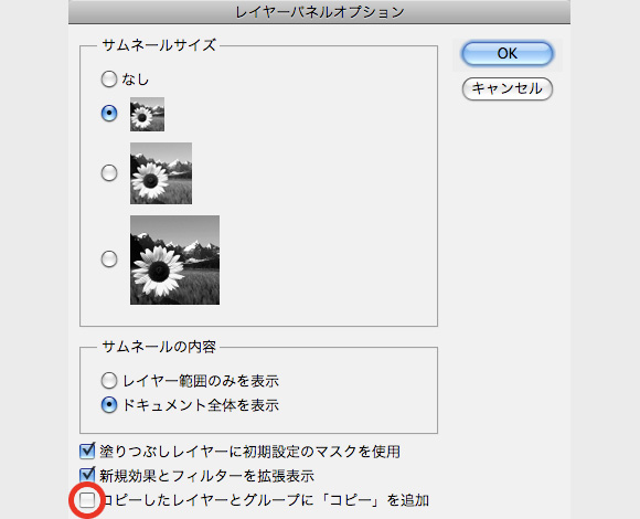 pscs5_copy3.jpg